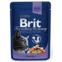 Brit For wellness and beauty dorsz 100g