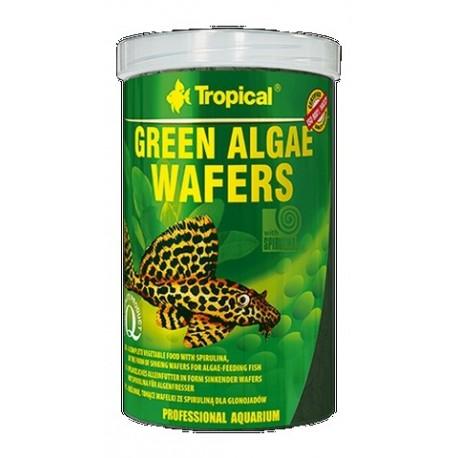 Tropical green alges Zielone algi wafelki 113g
