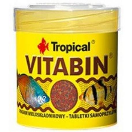 Tropical vitabin pokarm wieloskładnikowy dla ryb akwariowych tabletki samoprzylepne 36g